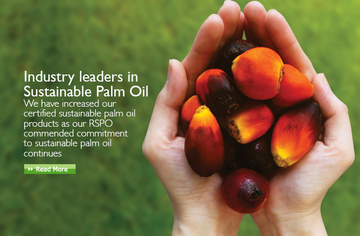 Palm Oil - Latest News