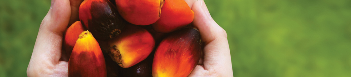 Croda Continues Support of Sustainable Palm Oil
